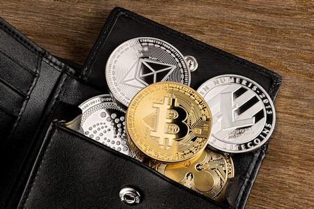 wallet mit kryptowährungen bitcoins